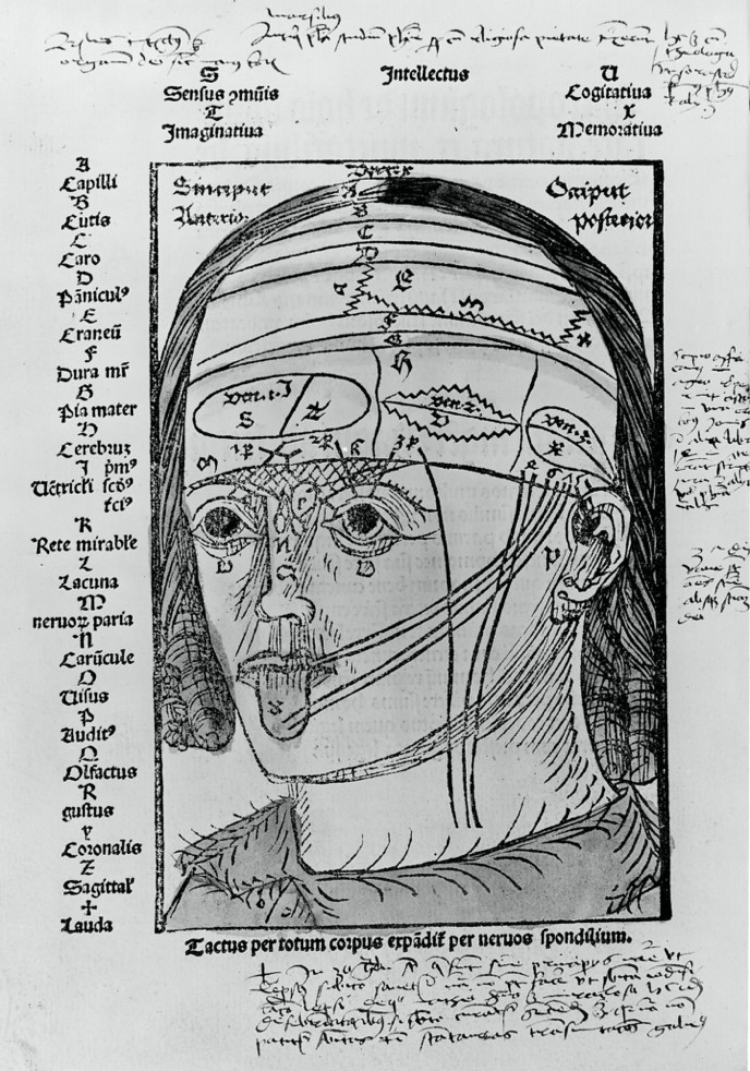 A page from a Renaissance medical textbook showing links between the senses and different parts of the brain